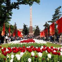 Volgograd :: Alexander Varykhanov