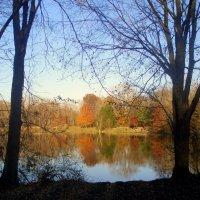 Осенний пейзаж. :: Елена