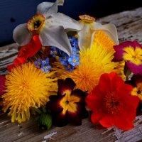 бал цветов :: Ольга Cоломатина