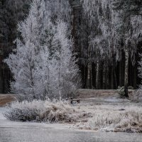 Озеро2 :: Валентин Щербаков
