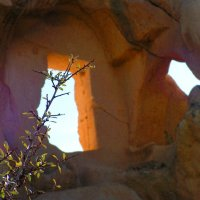 На руинах древнего монастыря :: Елена Даньшина