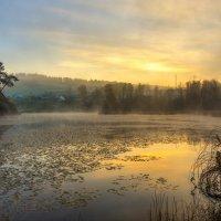 Утро на озере :: Андрей Васильев
