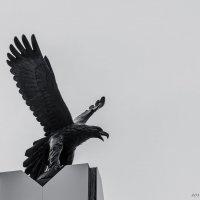 Бронзовая птица :: Вадим Кудинов