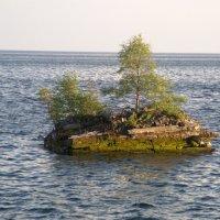 Одиночное плавание :: Виктор Заморков