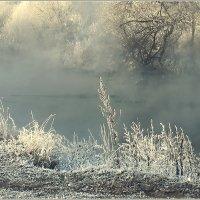 Холодные берега тёплой речки :: Olenka