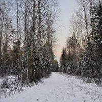 Первый снег :: Viktor Pjankov