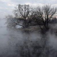 Утро туманное,утро седое. :: vkosin2012 Косинова Валентина