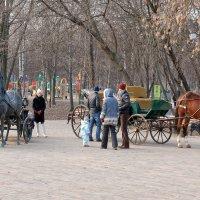 кто выберет железного коня, тот никуда сегодня не поедет :: Олег ХРОНОС