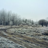 с первым снегом СПБ :: Екатерина Яковлева