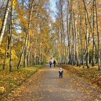 Золотая осень в Ясной Поляне. :: Горбушина Нина