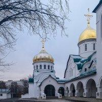 Нижний Новгород. Храм святого великомученика и целителя Пантелеимона :: Максим Баранцев