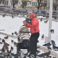 Кушайте, кушайте... :: Андрей Синицын