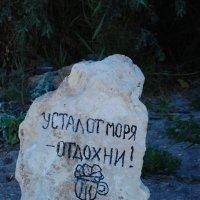 тарханкут :: Алекс