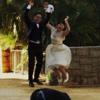 китайская свадьба :: Тамара Бердыева