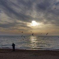 Вечер на пляже. :: Ирина Нафаня