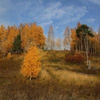 Золотая :: Leonid 44