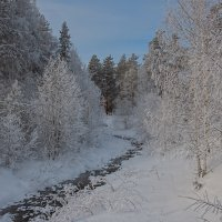 Морозный денек :: vladimir