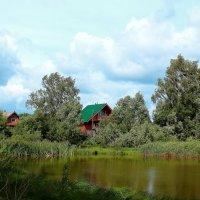 Июньский ветерок над деревней :: Татьяна Ломтева