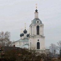 Утром в Калуге. :: Ольга Пахомова