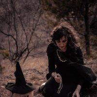 Ведьма в лесу :: Саша Седлецкий