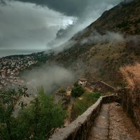 Про туман :: Игорь Иванов
