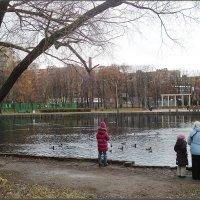 В осеннем парке городском... :: Галина