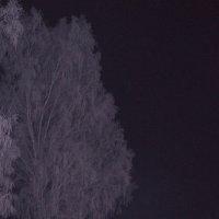 Ночной этюд :: Алексей Масалов