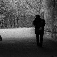 на прогулке :: Ирина Корнеева