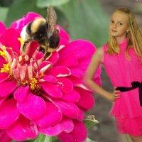 пчелка :: Татьяна Островская