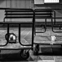 Кофе, чай или потанцуем? :: Sergey Kuznetcov