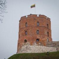 Вильнюс. Башня Гедеминоса :: Andrei Naronski
