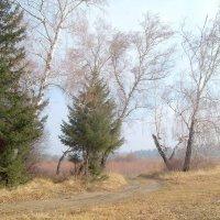 Поздняя осень на Иркуте :: alemigun