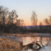 Прогулка у реки 2 :: Иван Анисимов