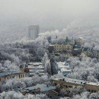Царство инея и тумана* :: ФотоЛюбка *