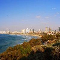 """""""Вид на Тель Авивский пляж"""" :: Aleks Ben Israel"""
