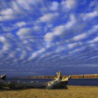 Зефирные облака :: Мария Конкина