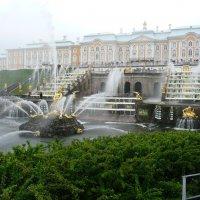 Вид на Большой дворец в Петергофе :: Виктор