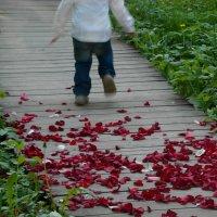 В Ботаническом саду :: Сергей Кузнецов