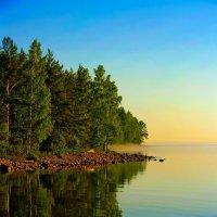 Предрассветный туман :: Михаил Осипов