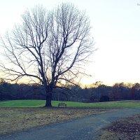 Безымянный пейзаж :: Arman S