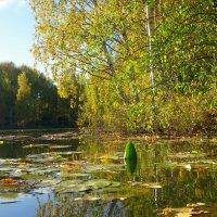 На реке. :: Святец Вячеслав