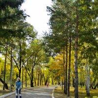 Осенний парк :: Валерий Кабаков