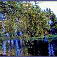 Парк в ЦКБ Москва :: Tata Wolf