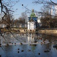 Николо-Угрешский монастырь. :: Владимир Воробьев