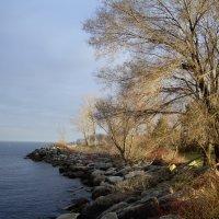 Вечер на острове близ Торонто.... :: Юрий Поляков