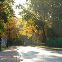 Переулок Кваренги. :: Владимир Гилясев