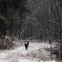 Первый снег. Прогулка :: Юрий Цыплятников