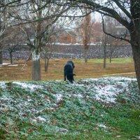 Зима идет, бродяга. :: Владимир Боровков