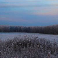 Морозное утро ноября. :: Маргарита ( Марта ) Дрожжина