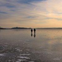 """Осенний лед (из серии """"Дачные истории"""") :: галина северинова"""